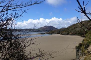 Portmerion Beach